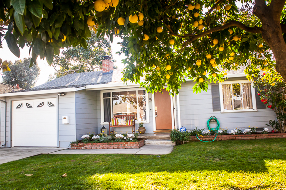 This neat little home in Mountain View, will sell in a week or less. Love the old fruit trees!