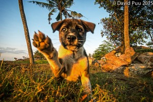 Congrats, you made it back to Bali! My shooting partner on my first morning shoot on Bali.